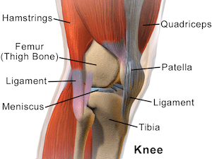 how to fix knee pain
