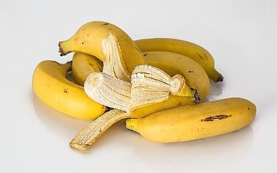 Carrots and Bananas: Bad for You? Glycemic Index Talk